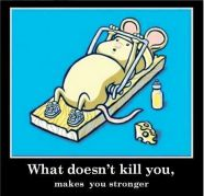 What doesn\'t kill you, makes you stronger