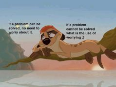 If a problem can be solved...