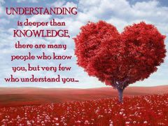 Understanding is deeper than knowledge